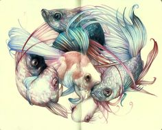 """""""The Fishcloud"""" 2012,colored pencils and ink on moleskine paper, cm 21x26"""
