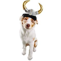 Bootique Dog Hat Halloween Costume Wagnar The Viking Horns S/M Small Medium Halloween Costumes Pop Culture, Halloween Costume Accessories, Cute Halloween Costumes, Halloween Town, Spirit Halloween, Baby Halloween, Halloween Ideas, Pet Costumes For Dogs, Cat Costumes