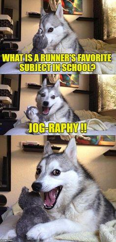 Bad Pun Dog (Nacho Cheese Funny)
