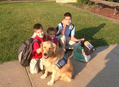 Okulun İlk Günü Konseptiyle Hazırlanmış 26 Komik Köpek Fotoğrafı Sports, Hs Sports, Sport, Exercise