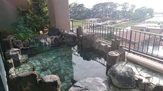 Toi Fujiya Hotel 3.5* (Идзу) - отзывы и фото - TripAdvisor