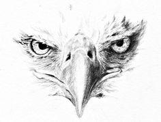 Eagle Art Print