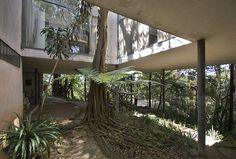So cool! Glass House (Casa Bo Bardi) in a suburb of Sao Paulo Architect: Lina Bo Bardi 1951
