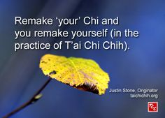 Only those who are accredited may teach T'ai Chi Chih®. To find an accredited T'ai Chi Chih teacher in your area: Open a PDF list of teachers sorted by location or sorted by name. Justin Stone, Teacher List, Chi Energy, Excercise, Stone Quotes, Healthy, Martial Arts, Meditation, Household