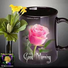 Good Morning Beautiful Pictures, Latest Good Morning Images, Good Morning Picture, Good Morning Flowers, Good Morning Good Night, Morning Pictures, Good Morning Wishes, Morning Blessings, Night Wishes