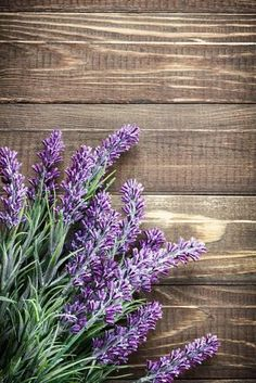 Photographic Print: Lavender by Sea Wave : Wallpaper Nature Flowers, Nature Iphone Wallpaper, Flower Wallpaper, Lawn Soil, Wallpaper Aesthetic, Rustic Wallpaper, Rustic Background, Sea Waves, Backgrounds