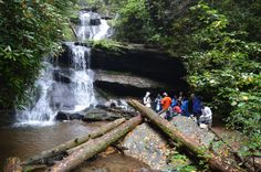 Top 9 Waterfalls in Georgia that Require No Hiking Camping Places, Places To Travel, Places To See, Travel Destinations, Waterfalls In Georgia, Clayton Georgia, Hiking In Georgia, Beautiful Waterfalls, Places Of Interest