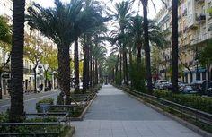 Avenida del Reino de Valencia. #Valencia #Spain