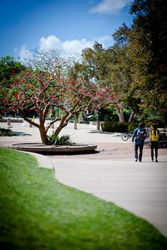 Point Loma Nazarene University; outside of Brown Chapel