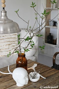 WONDERWOOD.no: Forcing branches to bloom inside