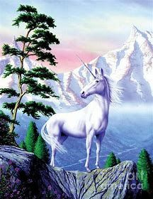 Unicorn Realistic Art Unicorn Art