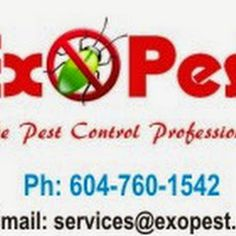 Exopest Pest Control - Business Photos Business Photos, Pest Control, Ants, Ant, Bed Bugs Treatment