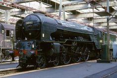 "60145 ""Saint Mungo"" : LNER A1 4-6-2   York North shed, 19th July 1965. Photo by Bill Wright (BarkingBill)"