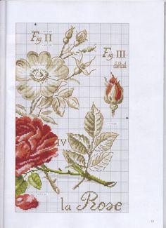 Gallery.ru / Фото #12 - 28 Botanique - Mussen 123 Cross Stitch, Cross Stitch Kitchen, Cross Stitch Flowers, Cross Stitch Embroidery, Le Point, Embroidery Designs, Bugs, Album, Pattern