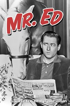 Mister Ed (TV Series (Mister Ed puhuva hevonen) Childhood Tv Shows, My Childhood Memories, Mejores Series Tv, Mister Ed, Vintage Television, Old Shows, Vintage Tv, Vintage Games, Great Tv Shows
