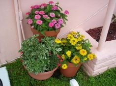 Fabrica tu propio sustrato para plantas en macetas - Plantas En Macetas