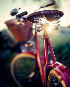 the light! The bike!