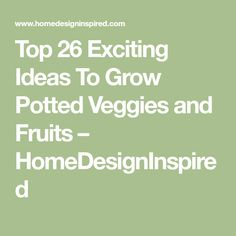 Top 26 Exciting Ideas To Grow Potted Veggies and Fruits – HomeDesignInspired