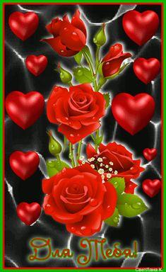 Beautiful Flowers Images, Beautiful Love Pictures, Love You Images, Beautiful Photos Of Nature, Flower Images, Beautiful Roses, Rose Flower Wallpaper, Flowers Gif, Heart Wallpaper
