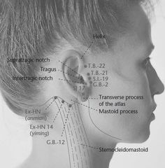 Are you suffering from #JawPain and TMJ? Ditch the painkillers and activate these #Acupressure points. #ModernReflexology