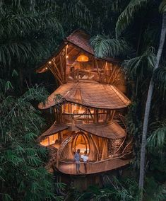 Beautiful Tree Houses, Cool Tree Houses, Amazing Houses, Amazing Tree House, Luxury Tree Houses, Jungle House, Forest House, Tree House Designs, Beautiful Places To Travel