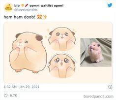 Cute Animal Memes, Funny Animal Photos, Cute Funny Animals, Cute Little Animals, Baby Animals, Animal Drawings, Cute Drawings, Derpy Cats, Art Jokes