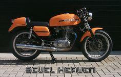 1974 Ducati 450 Desmo bevel drive single.  Beauty,