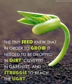 """Phillipians 1:6 (KJV) """"Being confident of this very thing, that he which hath begun a good work in you will perform it until the day of Jesus Christ:"""""""