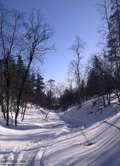 Small lappish gorge in the fells of Saariselka, Lapland. #saariselka #saariselankeskusvaraamo #astueramaahan #stepintothewilderness #lapland #snow #kuru #natureofsaariselka Saariselän Keskusvaraamo - North Village http://www.saariselka.com