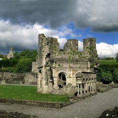 Mellifont Abbey Co Louth, the old one. There's also the new Mellifont Abbey in Collon, Co. Louth as well, currently in fine shape,  a going monastery of Cistercian monks whose apiary bees happen to make the loveliest honey. I wonder if Fr. Francis' roses are still there.