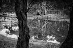 Brays Bog.  More picturesque than it sounds.  You Yangs, Vic. Australia. Words & Image: © Gary Light (2017). Creative Commons: (CC BY-NC-ND 4.0).  #photography #nature #landscape #walking #trails #victoria #australia