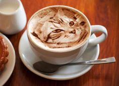 Amazingly detailed cat latte art by the talented and inspired by her cats @dongurinekobei l #portrait #latteart #coffeeart