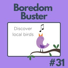 What kind of birds can you find? Kinds Of Birds, Boredom Busters