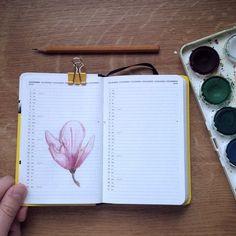 http://pimpernelia.weebly.com/m369terem.html