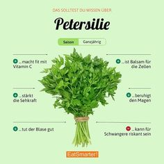 Do you like parsley? Our top 15 recipes with parsley: eatsmarter. All U Can Eat, Top 15, Diet Recipes, Healthy Recipes, Nutrition, Food Facts, Superfood, Good To Know, How To Stay Healthy