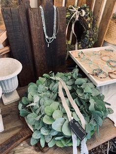 Les michous Succulents, Plants, Succulent Plants, Planters, Plant, Planting