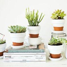 Plantes pots terre cuite peints