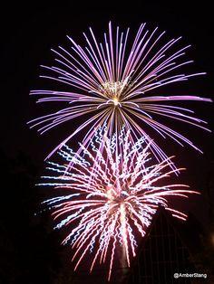 81 Fireworks Bam Ideas Fireworks Fire Works Fireworks Display