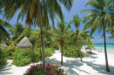 The Amazing Four Seasons Resort, Maldives