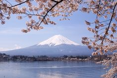 From hiking up Mt Fuji in Japan to cycling trips in China, these Asia adventure travel destinations offer an adrenalin rush of a lifetime.There are many different areas in Asia that allow your inner … Monte Fuji, Yamanashi, Parc National, National Parks, Thank You In Japanese, Amazing Destinations, Travel Destinations, Holiday Destinations, Travel Tips