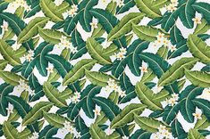 Colors and shapes of this picture may vary from the original fabric. Hawaiian Print, Playsuit, Plant Leaves, The Originals, Natural, Fabric, Plants, Pictures, Color