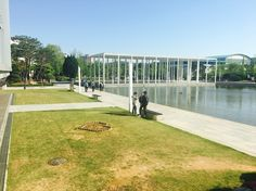lake park in Hanyang university erica campus !! there are many students in lake park always #university #lakepark #lake #park #campus #sunnyday