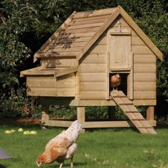 Building a small chicken coop chicken coop recycled pallet wood ideas easy to make small chicken . building a small chicken coop Backyard Chicken Coop Plans, Chicken Coop Pallets, Building A Chicken Coop, Chickens Backyard, Chicken Coop Large, Chicken Barn, Diy Chicken Coop, Metal Chicken, Chicken Houses