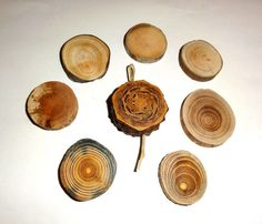 Jewelry supplies findings, natural wood slice for pendants, keychains, earrings…