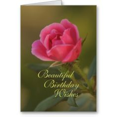 =>>Cheap          Rose Vision card- customize any occasion           Rose Vision card- customize any occasion This site is will advise you where to buyDeals          Rose Vision card- customize any occasion please follow the link to see fully reviews...Cleck Hot Deals >>> http://www.zazzle.com/rose_vision_card_customize_any_occasion-137902499694535270?rf=238627982471231924&zbar=1&tc=terrest