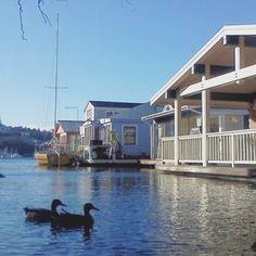によるInstagramの写真ficklekitten - dreamy houses on lake union