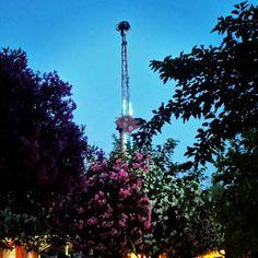 4G!!!! Cn Tower, Park, Building, Fun, Travel, Viajes, Buildings, Parks, Destinations