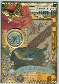 Harmony   Flickr - Photo Sharing!