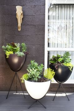 Today, I will reveal to you some cool and charming garden features that will turn your garden into your small paradise. So, take a tour around my 20 Stylish Garden Decor Ideas That Will Impress You Modern Planters, Outdoor Planters, Outdoor Gardens, Modern Outdoor Living, Fiberglass Planters, Garden Features, Garden Pots, Garden Inspiration, Indoor Plants