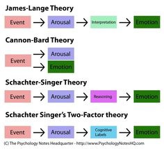 Psychology Notes - Theories of Emotion